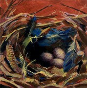 Greeting Card House Wren Nest
