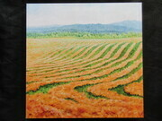 Hay Fields Print on Board