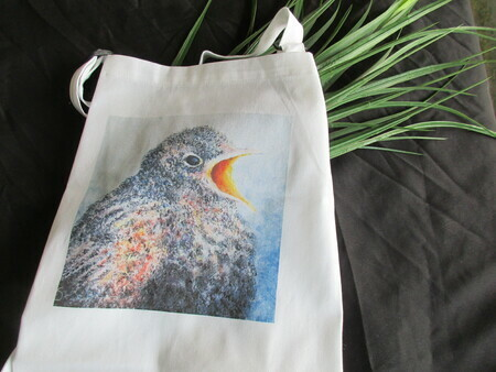 Hungry Robin Apron
