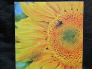 Sunflower & Bee Print on Board