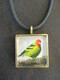 Western Tanager, large pendant